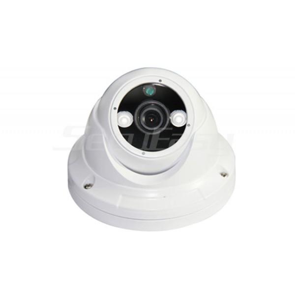 Камера AHD SE-AA202P4 1080P / Купольная